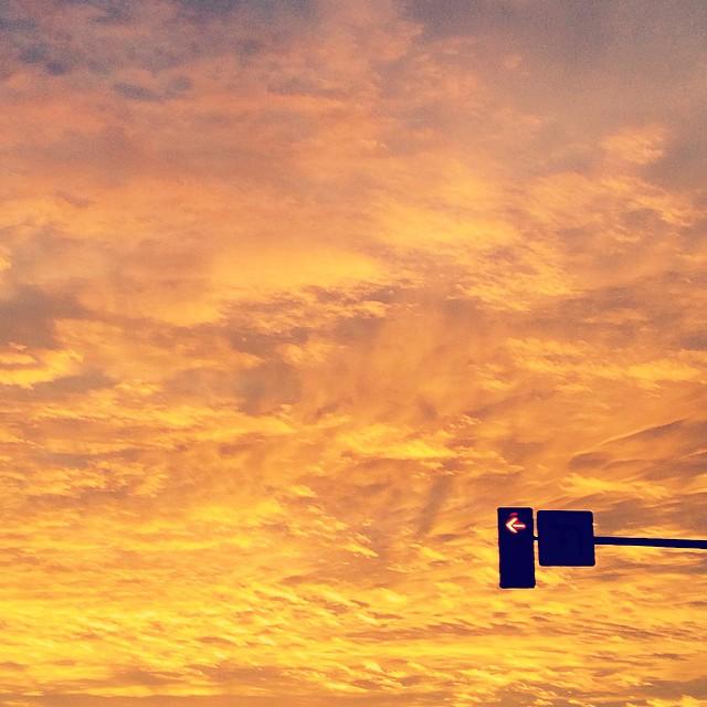 July 25, 2015 (3:45 pm)